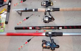 Выбор удочки для летней рыбалки