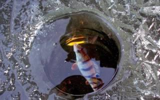 Чем бурят лед на рыбалке