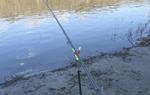 Все о фидерной рыбалке для начинающих