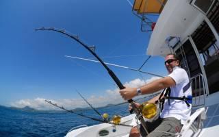 Рыбалка на донку с берега