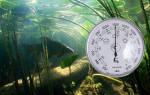 Какое давление для ловли рыбы