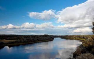 Где искать леща на реке летом