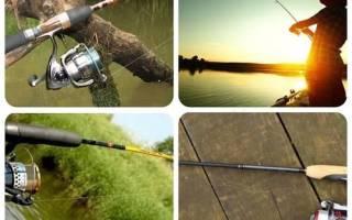 Рыболовные снасти для спиннинга