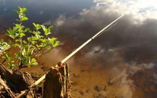 Крепление лески к маховому удилищу