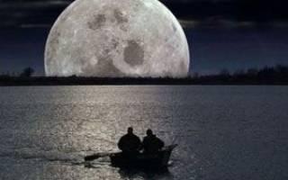При какой фазе луны лучше клюет рыба