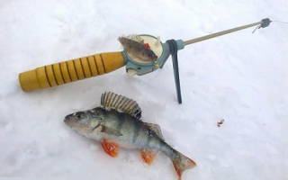 Рыбалка на зимнюю блесну