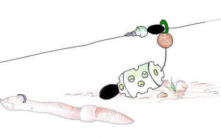 Как ловить рыбу на кормушку