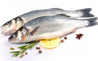 Сибас речная или морская рыба