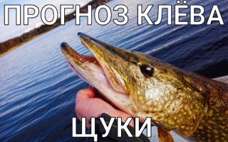 Рыболовный прогноз клева